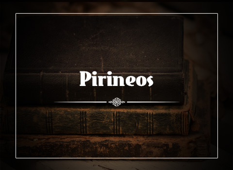 old-books-pirineos